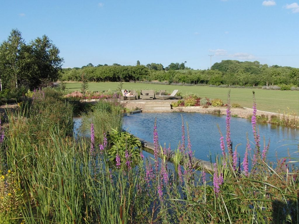 Natural Swimming Pool In Worcestershire Our Portfolio